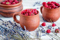 Raspberry composition in pottery with dry lavender rustic background Royalty Free Stock Photo