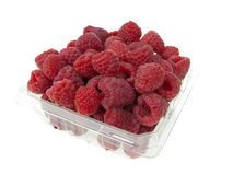 Raspberry container. On pure white background Stock Photography