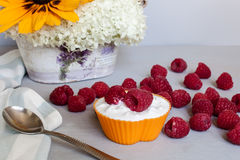 Raspberry and cottage cheese Royalty Free Stock Photo