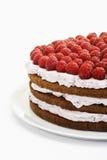 Raspberry cream cake Royalty Free Stock Photo