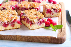 Raspberry crumble cake. Slices, selective focus stock photography