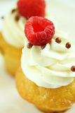Raspberry cup cake Royalty Free Stock Image