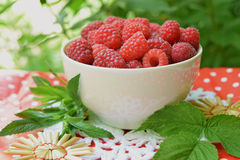 Raspberry in cup. Ripe raspberry in cup Compositions with mint leaves and raspberries Stock Photos