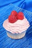 Raspberry cupcake Stock Image