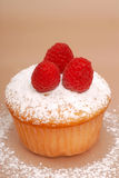 Raspberry cupcake Stock Images