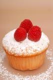 Raspberry cupcake Stock Images