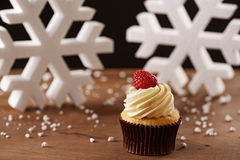 Raspberry cupcake on Christmas background Stock Photo