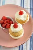 Raspberry Cupcake Royalty Free Stock Photo
