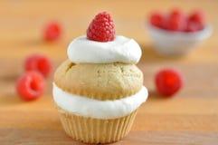 Raspberry Cupcake Stock Photo