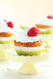 Raspberry cupcakes Royalty Free Stock Image