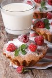 Raspberry cupcakes closeup and milk in a glass vertical Stock Photos