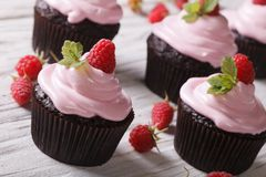 Raspberry cupcakes with fresh mint on a table close-up. horizontal royalty free stock photography