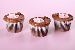 Raspberry cupcakes on pink Stock Images