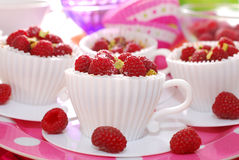 Raspberry cupcakes in tea cup shape molds Royalty Free Stock Photography