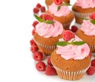Raspberry cupcakes Stock Image