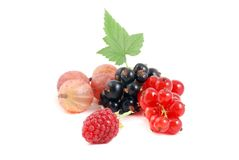 Raspberry, Currant and Gooseberry. Fruits isolated on white background Royalty Free Stock Photos