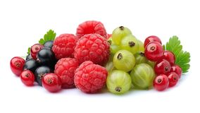 Berries mix. royalty free stock photography