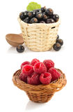 Raspberry  and currants berry on white. Background Royalty Free Stock Photo