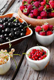 Raspberry and currants Royalty Free Stock Images