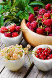 Raspberry and currants Stock Photography