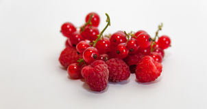 Raspberry and current  on white Royalty Free Stock Photos