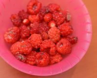 Raspberry. Delicious Raspberry in purple bowl Royalty Free Stock Image