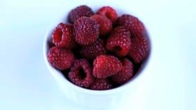 Raspberry stock footage