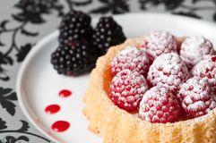 Raspberry Dessert Stock Images