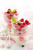 Raspberry dessert. With cream  and biscuits in glasses Royalty Free Stock Photos