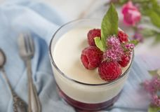Raspberry dessert, cheesecake stock photo