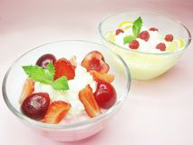 Raspberry dessert with pudding Stock Images