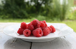 Raspberry on a Dish. Fresh Raspberry on a Dish in a Garden Stock Photo