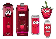 Raspberry drinks and berry in cartoon style Stock Image