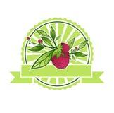 Raspberry Emblem Royalty Free Stock Image