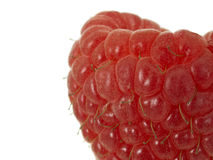 Raspberry extreme macro Stock Photography