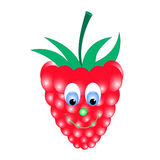 Raspberry cartoon vector. Raspberry red color with green foliage and eyes Royalty Free Stock Photography