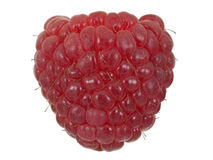 Raspberry face Royalty Free Stock Photography