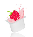 Raspberry falling into yogurt splash in plastic packing. On white background Stock Image