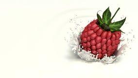 Raspberry falls into milk Stock Photo
