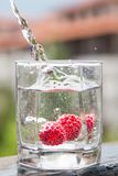 Raspberry falls under water Stock Photography