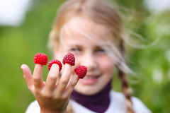 Raspberry fingers Royalty Free Stock Photo