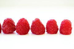 Raspberry. Five red sweet raspberries in a row Stock Photos