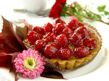 Raspberry flan. Fruit cake Stock Images