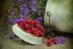 Raspberry and flowers Stock Images