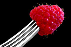 Raspberry on a Fork. A single red raspberry stuck to the end of a fork Stock Photography