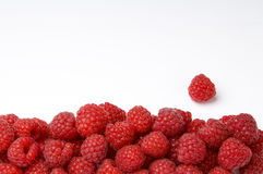 Raspberry Frame. With Copy Space Royalty Free Stock Photography
