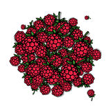 Raspberry frame, sketch for your design Stock Photography