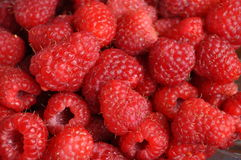 Raspberry. Fresh bio red raspberry fruits background Stock Images