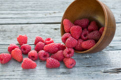 Raspberry. Fresh Organic Raspberry In the overturned wooden bowl on wooden boards Royalty Free Stock Photo