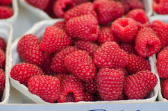 Raspberry. Fresh raspberry in the shop royalty free stock photography